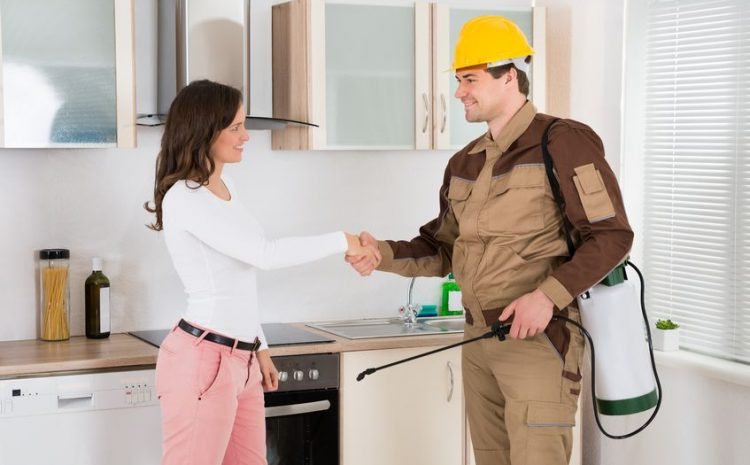 An Evaluation Of Efficient Pest Management Sydney